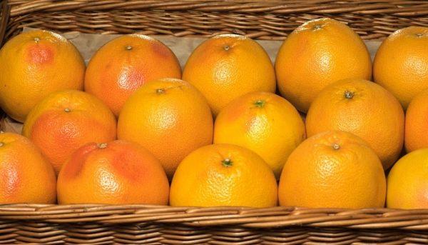 תפוז וושינגטון (טבורי) 50 ל' (washington)